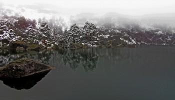 laguna negram humedales españa, aves, protección, ramsar