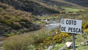 cotos pesca, tramos libres, libre sin muerte, españa, aguas, regulación