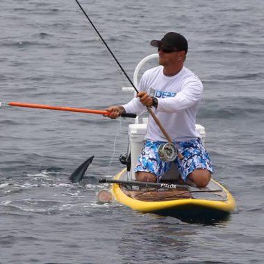 tiburón mako desde paddle board