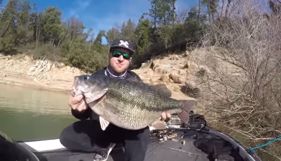 Spotted bass record, récord del mundo de spotted bass, black bass, noticias de pesca, récord IGFA , Nick Dulleck, Cody Myer