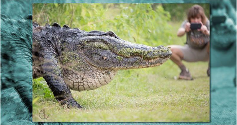 cocodrilo gigante Florida, Sean y Krist Buckley