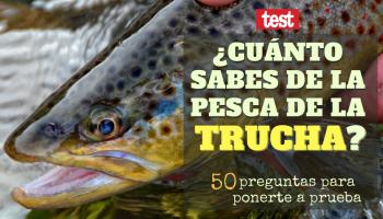 test, quiz, cuánto sabes de la pesca de la trucha, pescar truchas, concurso, pesca, cosas chulas de pesca