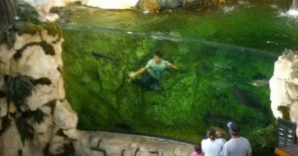 saltando acuario Bass Pro Shops, vídeo YouTube, vídeo virañ, tanque Basss Pro Shops, broma adolescente, pesca