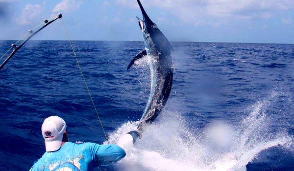viajes de pesca, Fishtripr, pesca, fly fishing, Patagonia, pesca de mar