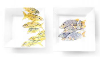 platos de pesca. vajillas de psca