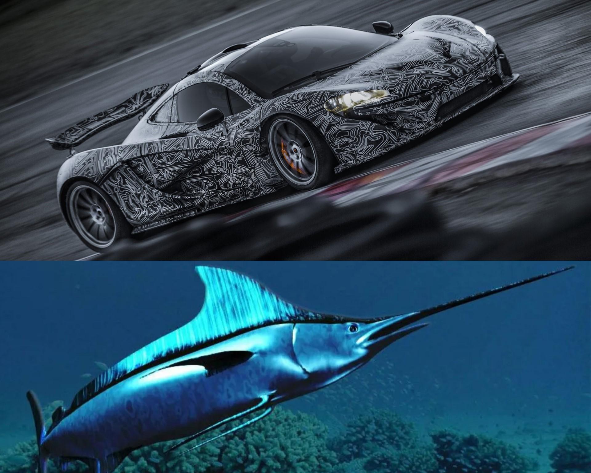 Mclaren P1 inspirado en un pez vela, autos inspirados en peces